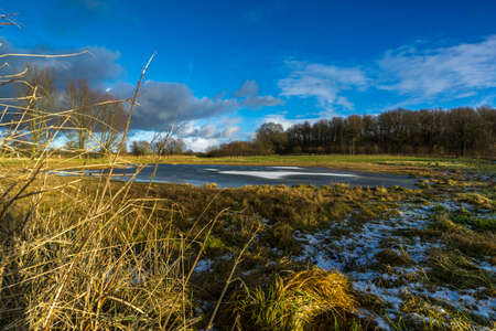 On a meadow with a half-frozen pond and a blue sky