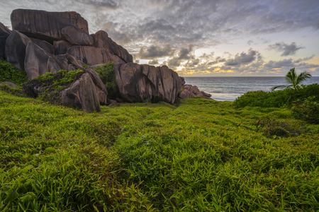 Lush green grass and red granite rocks in the sunrise on la digue on the seychelles. Stock Photo