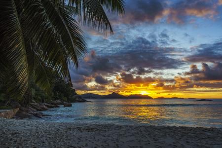 Beautiful romantic sunset through a palm leaf on paradise beach at anse severe, la digue, seychelles