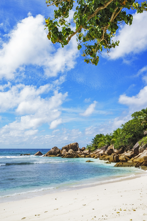 Granite rocks, white sand, turquoise water, blue sky and palms on paradise beach on the Seychelles, anse cocos, la digue
