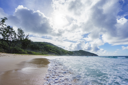 wild tropical beach with palm trees in a jungle, sand and a rough sea at police bay on the seychelles on a cloudy day