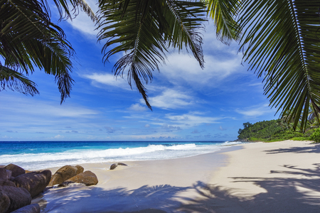beautiful paradise beach with palm trees, granite rocks, white sand and turquoise water at anse bazarca, seychelles Standard-Bild - 93855110