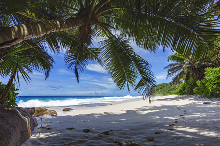 beautiful paradise beach with palm trees, granite rocks, white sand and turquoise water at anse bazarca, seychelles Stock Photo