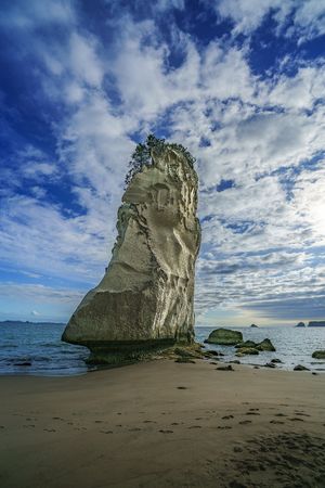 sand and the mighty sandstone rock monolith in the water of cathedral cove,coromandel, new zealand
