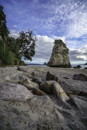 stones in the sand, green grass on the cliff and sandstone rock monolith in the water of cathedral cove beach,coromandel, new zealand Stock Photo