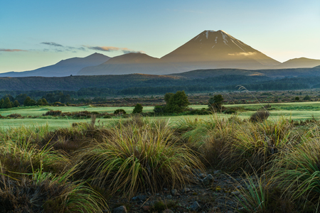 Lord of the rings Cone volcano at sunrise,Mount Ngauruhoe,New Zealand Stock Photo
