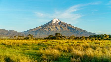 lush grass,trees and the cone volcano mount taranaki, new zealand