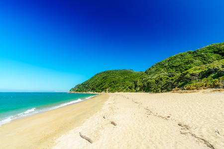 beautiful tropical paradise beach with turquoise water and white sand in abel tasman national park, new zealand Standard-Bild - 107866085