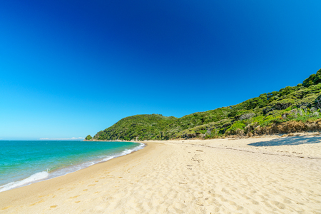 beautiful tropical paradise beach with turquoise water and white sand in abel tasman national park, new zealand Standard-Bild - 107866090