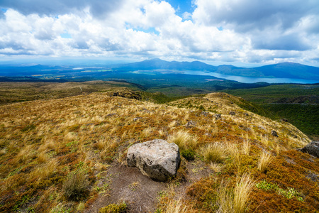 hiking the tongariro alpine crossing,grass on the  volcanic crater, footpath on volcano,new zealand
