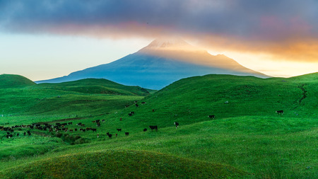 glowing and amazing sunrise over green grass, cone volcano mt taranaki, new zealand Standard-Bild - 114587640