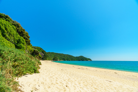 beautiful tropical paradise beach with turquoise water and white sand in abel tasman national park, new zealand Standard-Bild - 114590925