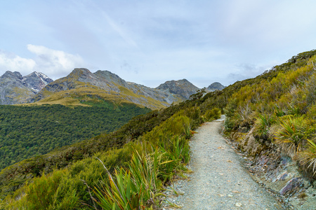 hiking un the mountains  the path of key summit track, southern alpes, new zealand