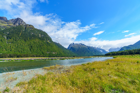 meadow with lupins on a river in a valley between mountains, southland, new zealand