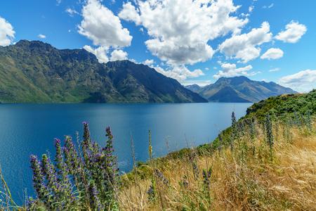 high mountains at lake wakatipu on a sunny day, otago, southern alps, new zealand Stock Photo