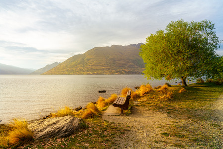 wooden bench under tree on glowing sunset at lake wakatipu in queenstown, southern alps, otago, new zealand