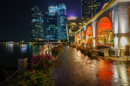 flowers in front of skyscrapers of financial district with reflections in the water at marina bay in singapore at night