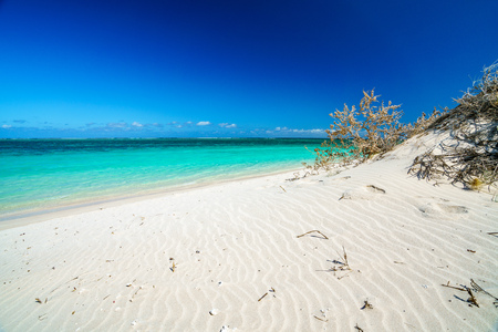 white sand and turquoise water on the beach of turquoise bay, cape range, western australia Standard-Bild - 116265422