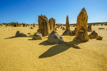 pinnacles desert of nambung national park in the morning, western australia