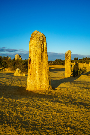 pinnacles desert of nambung national park, western australia 免版税图像