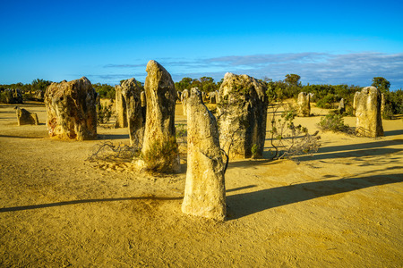 pinnacles desert of nambung national park, western australia