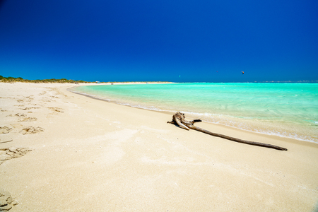 branch and turquoise water on the beach of sandy bay, cape range, western australia
