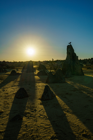 sunset over pinnacles desert at nambung national park, western australia