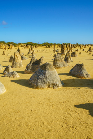 pinnacles desert of nambung national park in the morning, western australia