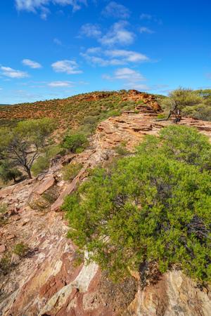 Hiking the canyon. natures window loop trail, kalbarri national park, western australia