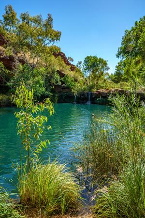 hiking to fern pool in dales gorge, karijini national park, western australia