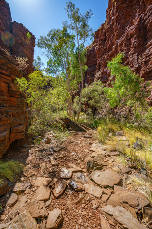 hiking down in the deep and narrow weano gorge in karijini national park, western australia