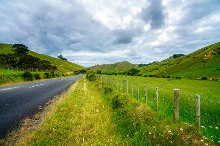 On the Road at beautiful Coromandel Peninsula, New Zealand