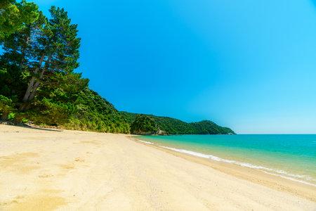 tropical beach in abel tasman national park in new zealand