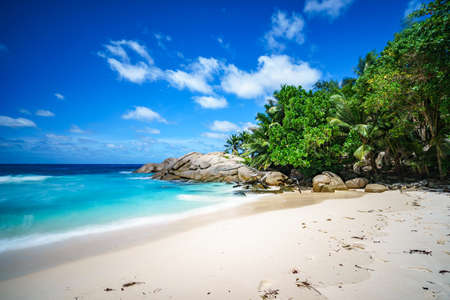 beautiful paradise tropical beach with palm trees, granite rocks, white sand, blue sky and turquoise water, police bay, mahé, seychelles