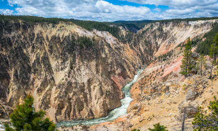 grand canyon of the yellowston from the north rim in wyoming in the usa