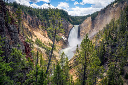 lower falls of the yellowstone national park in wyoming in the usa