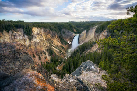 lower falls of the yellowstone national park at sunset, wyoming in the usa