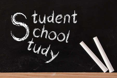 white chalks: Estudiante, universidad y estudio escriben en la pizarra con dos tizas de color blanco.