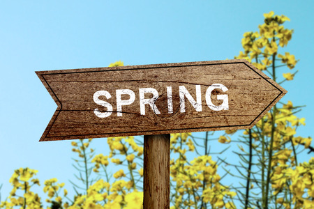 Spring wooden roadsign with beautiful natural background. photo