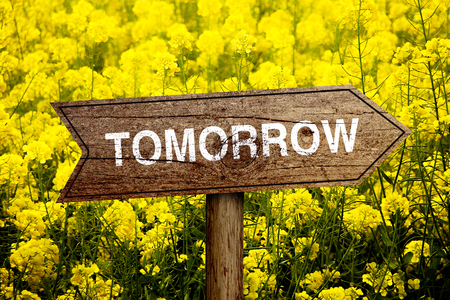 Tomorrow wooden roadsign with beautiful natural background.