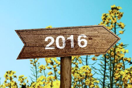 Year 2016 wooden roadsign with beautiful natural background. photo