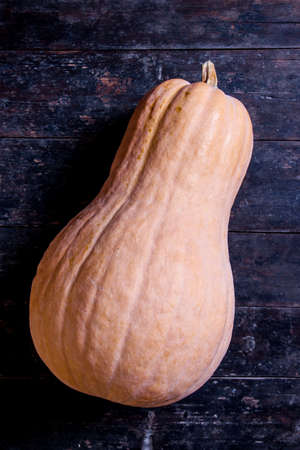 butternut: Butternut squash is on wooden rustic table. Stock Photo