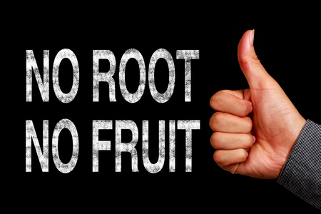 sarcastic: Text No Root No Fruit is written on the blackboard with thumb up hand aside.