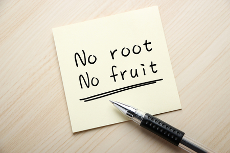 sarcastic: Text No Root No Fruit is written on the sticky note with ball pen aside. Stock Photo