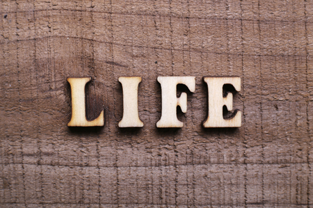 transience: Wooden Text Life with rustic wooden background.