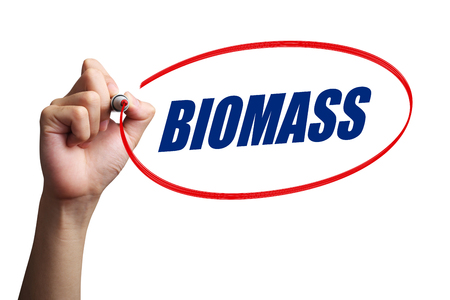 biomass: Hand is drawing a red circle around the word Biomass with white background. Stock Photo