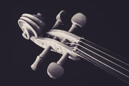 Closeup shot of violin