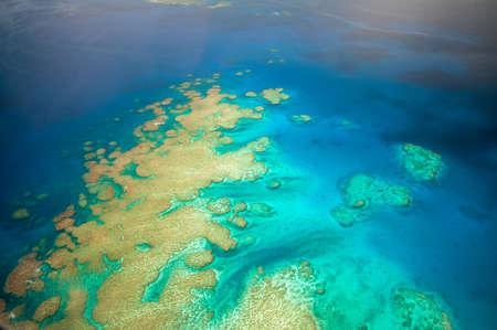 Aerial view of a coral reef at Kadavu Island in Fiji