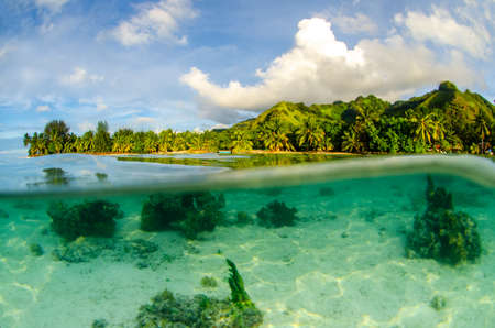 Underwater split shot of Moorea in Tahiti French Polynesia