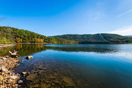 Weelderige vegetatie rondom Raystown Lake, in Pennsylvania tijdens de Zomer Stockfoto